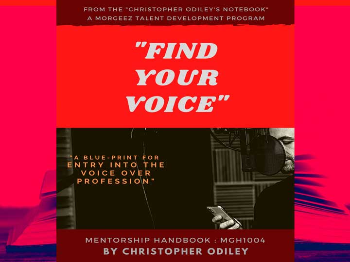 find your voice hand book